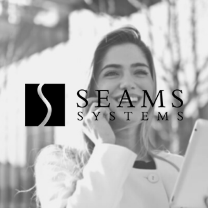 Seams Systems Logo